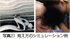 写真2)見え方のシミュレーション例
