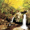 乙女の滝のイメージ画像1