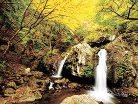 乙女の滝のイメージ画像