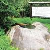 乙女の滝のイメージ画像3