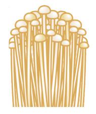 石窯焼きpizza カピトリーノのイメージ