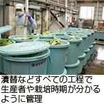 漬替などすべての工程で生産者や栽培時期が分かるように管理